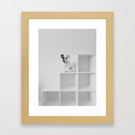 Puppy waiting Framed Art Print