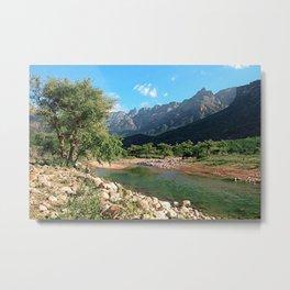 Mountain Creek Woodland, Socotra Island Metal Print