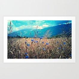 Catcher In The Rye Field Landscape Photo Art Print