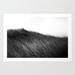 beachgrass b&w Art Print