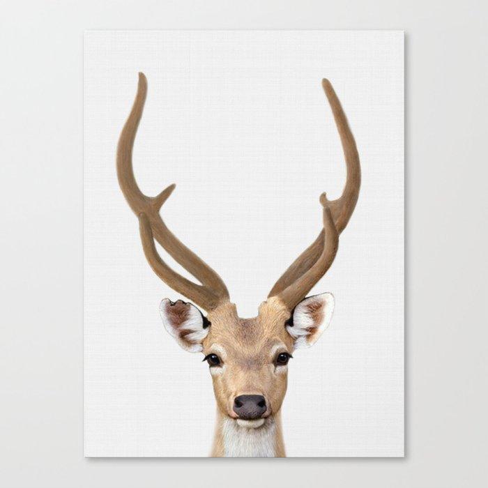 Deer Print Art Animal Prints Nursery Decor Animals Wall Canvas By Nikiandneo