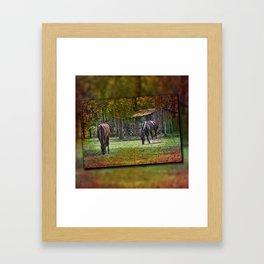 Horses Grazing Framed Art Print