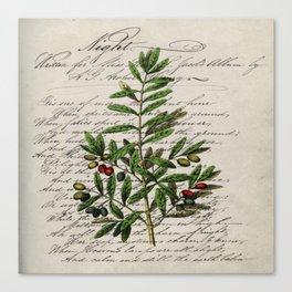 Chic paris scripts kitchen artwork french botanical leaf olive Canvas Print