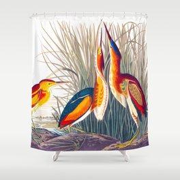Least Bittern Shower Curtain