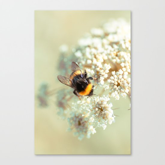 Bumblebee. Canvas Print