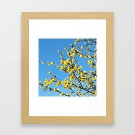 boom boom bloom Framed Art Print