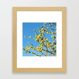 boom boom bloom Framed Art Print