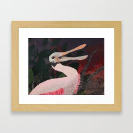 Laughing spoonbill Framed Art Print