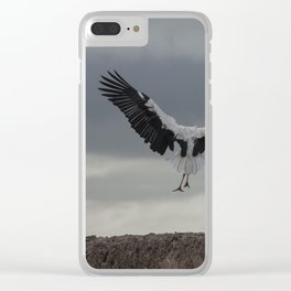 Spread your wings and land Clear iPhone Case