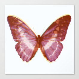 Dreaming of Butterfly Canvas Print