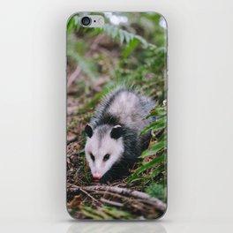 Hiss Hiss iPhone Skin