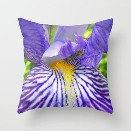 Purple Bearded Iris Monsignor Close Up Throw Pillow