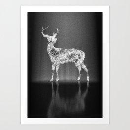 Deer in the Spotlight Art Print
