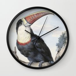 Red-billed Toucan, Aert Schouman, 1748 Wall Clock