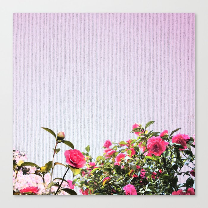 Surrendering to the beauty Canvas Print