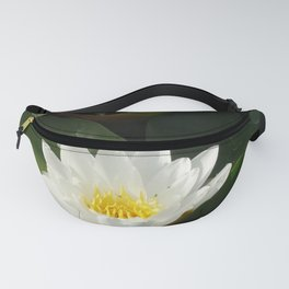 Purity Fanny Pack