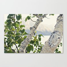 Under the Green Tree Canvas Print