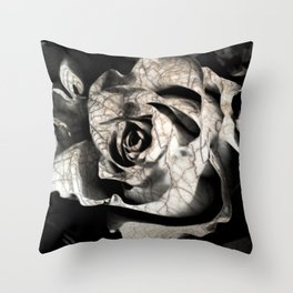 Rose forming from light and shadows Throw Pillow