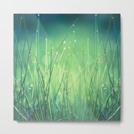 light-water and grass Metal Print