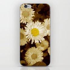 little daisy iPhone & iPod Skin