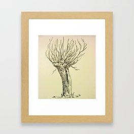 Dutch Willow Framed Art Print