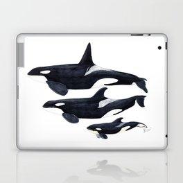 Orca (Orcinus orca) Laptop & iPad Skin