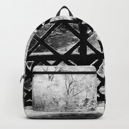 Winter Storm Photography Backpack