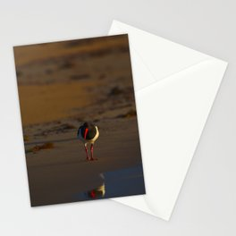 A Pied Oyster Catcher At The Break Of Dawn Stationery Cards