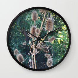 Gone to Seed Wall Clock