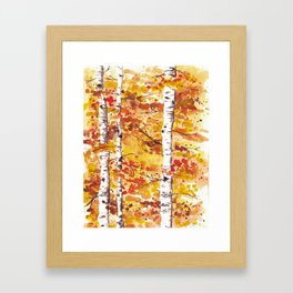 Fall Birch Trees Framed Art Print