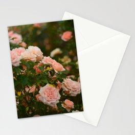 Flores de julio en Madrid Stationery Cards