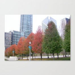 Chicago in November II Canvas Print