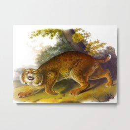 Wild Cat Metal Print