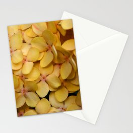 Flame of the Woods Stationery Cards
