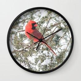 Cardinal on a Snowy Cedar Branch Wall Clock