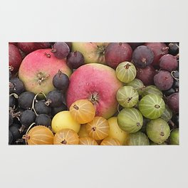 Five a Day Rug
