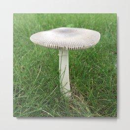 Fungus Among Us (light grey) Metal Print