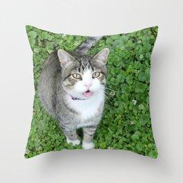 Cat in Clover Throw Pillow