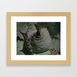 Silvery Green Agave Bud Imprints  Framed Art Print