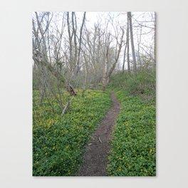 White Clay Super Bloom 2 Canvas Print