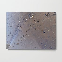 Bird Tracks in Mud at Low Tide Below the Casco Bay Bridge (1) Metal Print