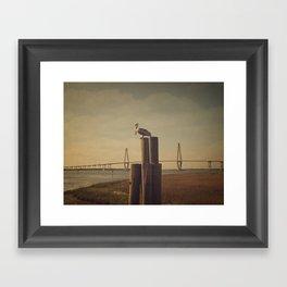 Pelican at the Cooper River Bridge Framed Art Print