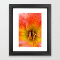 Gorgeous Framed Art Print