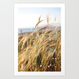 Wild grass in the wind by the sea Art Print