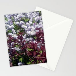 Lilactica Stationery Cards
