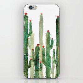 Cactus 3 iPhone Skin