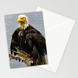Eagle Drip Dry Stationery Cards