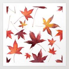 Dead Leaves over White Art Print