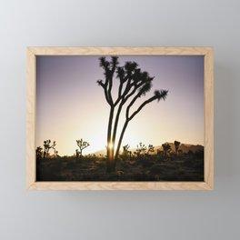 Joshua Tree Sunrise  Framed Mini Art Print