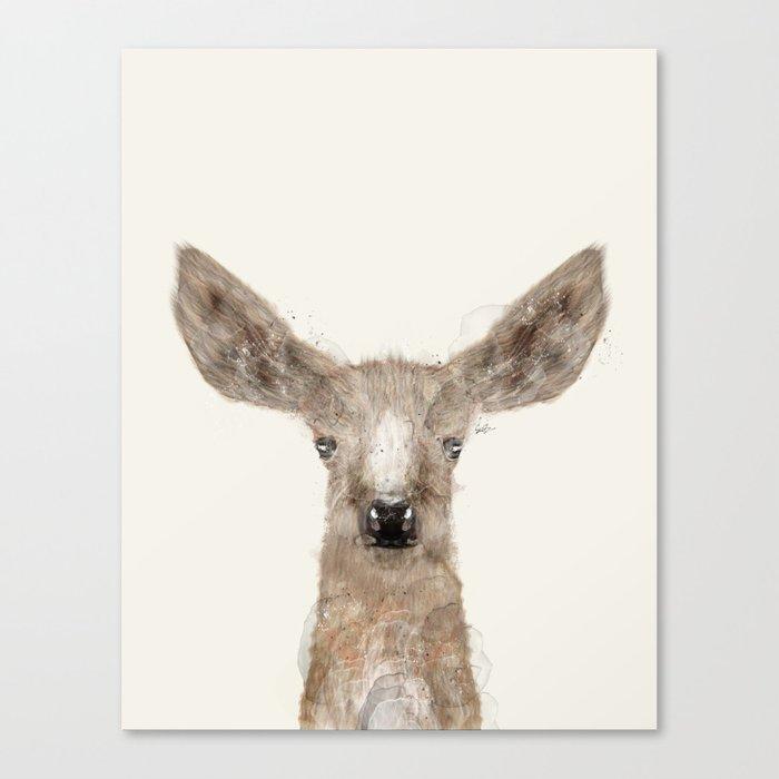 little deer fawn Canvas Print